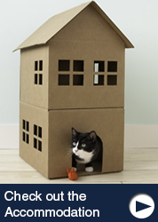 Accommodation at Carlton Cattery
